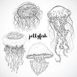 Kolekcja jellyfish Rocznik ustawiający czarny i biały ręka rysować morskie fauny również zwrócić corel ilustracji wektora royalty ilustracja