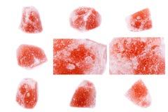 Kolekcja kamienny kopalny Saltstone orthopase Zdjęcia Royalty Free