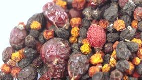 Kolekcja Karpackie jagody zbiory