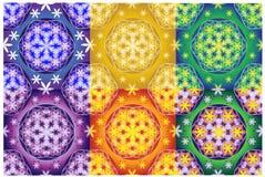 Kolekcja 6 kwiat życie bezszwowi wzory ilustracja wektor