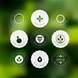 Kolekcja majchery i odznaki dla naturalnych produktów f i eco ilustracji