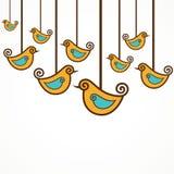 Kolekcja śmieszni ptaki Zdjęcia Royalty Free