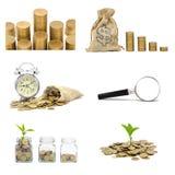 Kolekcja monety, pieniądze dorośnięcia roślina dla, oszczędzanie pieniądze i interesu wzrastający pojęcie odizolowywający dalej f zdjęcie royalty free