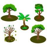 Kolekcja niektóre drzewa royalty ilustracja