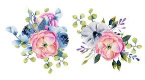 Kolekcja odosobneni akwarela bukiety anemony, róże i eukaliptus, ilustracji