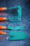 Kolekcja ogrodnictw narzędzia na porysowanym kruszcowym nawierzchniowym vertical Obraz Royalty Free