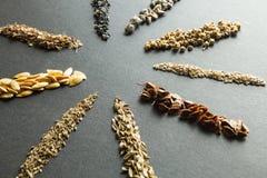 Kolekcja organicznie ziarna dla zasadza? w ziemi: rabarbar, sa?atka, beetroot, szpinaki, cebula, koper, melon, marchewka, koper, zdjęcie stock