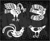 Kolekcja ptaki wektor Fotografia Royalty Free