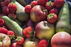 Kolekcja różne owoc Jabłka i truskawki zdjęcia stock