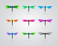 Kolekcja różny koloru motyl ilustracja wektor