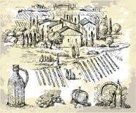 kolekcja rysujący ręki oryginału winnica ilustracji