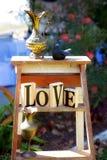 Kolekcja Stosowna Dla Ślubnego pokazu Romantyczny wystrój Zdjęcie Stock