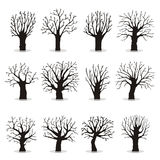 Kolekcja drzewo sylwetki Fotografia Royalty Free