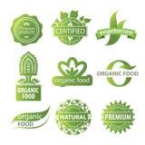 Roślina ekologiczny logo Zdjęcia Royalty Free