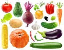 Kolekcja warzywa fotografia stock