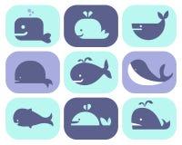 Kolekcja wektorowe wielorybie ikony ilustracji