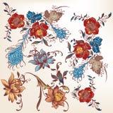 Kolekcja wektorowi dekoracyjni zawijasy barwił w tradycyjnym st Zdjęcie Royalty Free