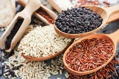 Kolekcja wyłączni wyśmienici ryż w drewnianych łyżkach - brown ri obraz stock