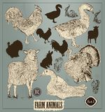 Kolekcja wysokości wyszczególniający ręki rysujący zwierzęta w rocznika stylu Obraz Royalty Free