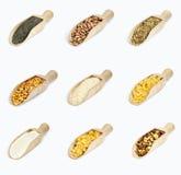 Kolekcja zboża na drewnianych łyżkach na bielu Zdjęcia Stock