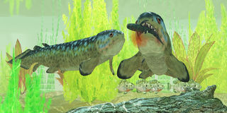 Kolhaltig Rhizodus fisk Arkivbild