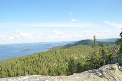 Koli National Park, Finnland stockbilder