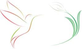 Kolibri- och blommaillustration Royaltyfri Fotografi