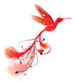Kolibri Phoenix Lizenzfreie Stockbilder