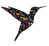 Kolibrie vector illustratie