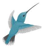 Kolibrie Royalty-vrije Stock Afbeeldingen
