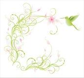 Kolibrie en bloemen vector illustratie