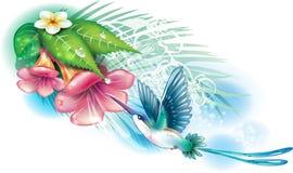 Kolibrie met bloemen stock illustratie