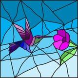 Kolibrie op een bloemgebrandschilderd glas Royalty-vrije Stock Afbeeldingen