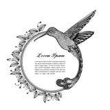 Kolibrie, zentangle stijl Vector illustratie Stock Afbeelding
