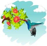 Kolibriflyg runt om blommorna stock illustrationer
