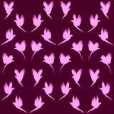 kolibris Lizenzfreie Stockbilder