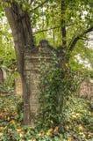 KOLIN,捷克- 2008年9月7日-老历史坟茔 库存图片