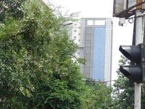 Kolkata de tierra del lugar de la parte posterior preciosa de la naturaleza fotografía de archivo