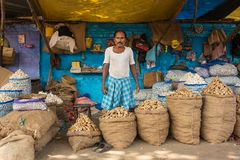 Unidentified indian seller selling ginger and garlic in Calcutta, West Bengal, India stock photography
