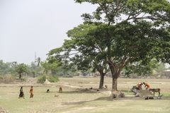 Kolkata, India. Circa May 2013: Rural life in the countryside, women and animals stock images