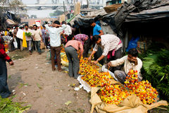 KOLKATA, INDIA: Male flower sellers prepare the goods on the famous market Royalty Free Stock Photography