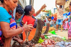 KOLKATA, INDIA - OKTOBER 05, 2018: Onbekende mensen die vissen verkopen bij een straatmarkt op 05 OKTOBER, 2018 op het Koley-Mark stock foto