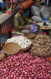 Kolkata vegetable market. Street trader sell vegetables outdoor on February 10, 2014 in Kolkata India. Only 0.81% of the Kolkata`s workforce employed in the Stock Images