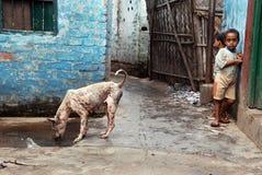 Kolkatas Elendsviertel-Bereich. Stockfotografie