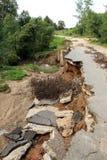 Kollaps av den stenlade vägen i skogen arkivfoton