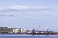 Kollastfartyg som förtöjas i port med lyftande lastkranar, skepp och korn royaltyfri foto