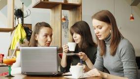 Kollegakvinnor diskuterar gemensamt projekt i kafé i den coworking mitten genom att använda en bärbar dator stock video