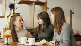 Kollegefrauen besprechen Gemeinschaftsprojekt im Café in der coworking Mitte und Herstellungsanmerkungen in einem Notizbuch stock video