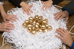 Kollegor runt om ett rede av guld- ägg Royaltyfria Bilder