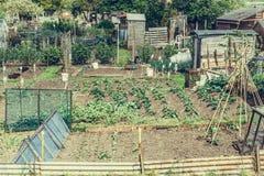 Kollektiva odlingslottar applicerat retro filter i för suffolken, England Royaltyfria Bilder